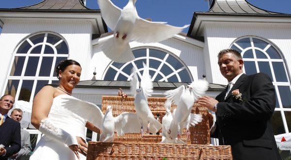 Weiße Hochzeitstauben auf der Insel Rügen - Seebruecke Sellin